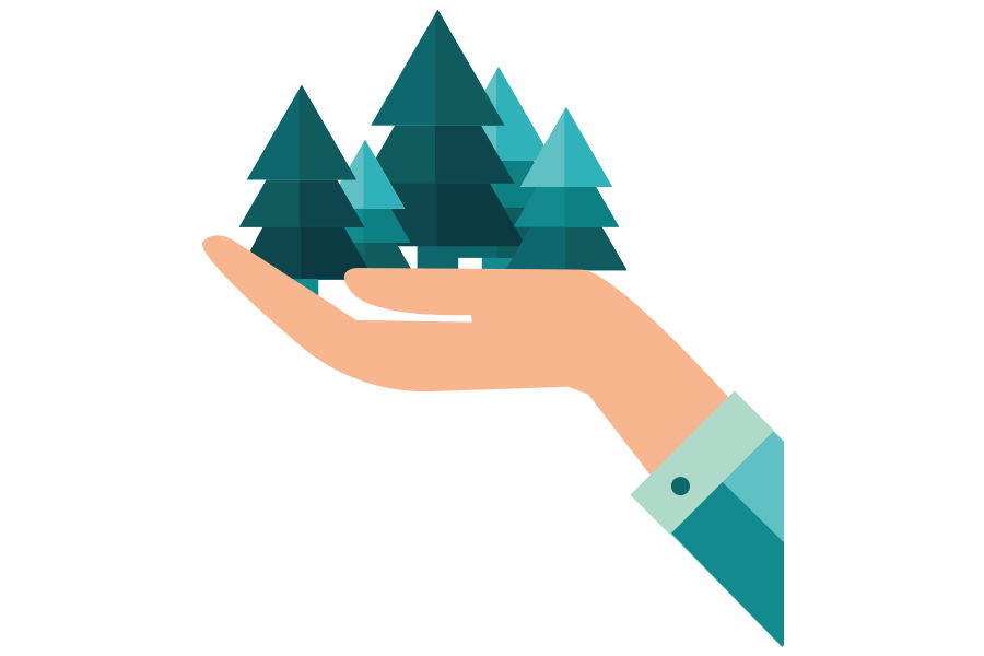 person's hand holding a forest of pine trees